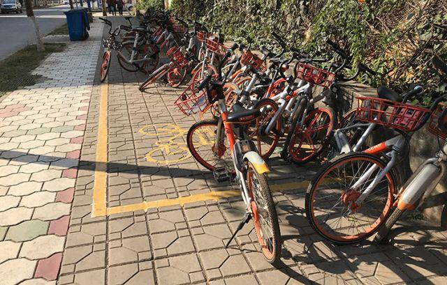 共享单车春节上演堆叠大戏
