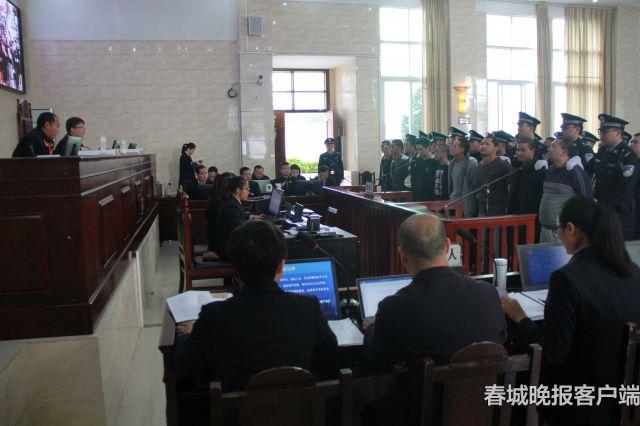 金平县法院审判涉黑案。